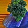 Broccolini Ikebana